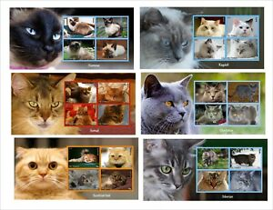 DOMESTIC-CATS-CAT-10-SOUVENIR-SHEETS-MNH-IMPERFORATED-part-2