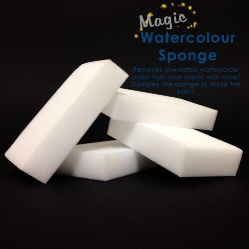 Magic Watercolour Sponge Pack of 4