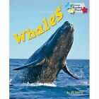Whales by Jill Atkins (Paperback, 2015)