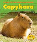 Capybara by Anita Ganeri (Paperback / softback)