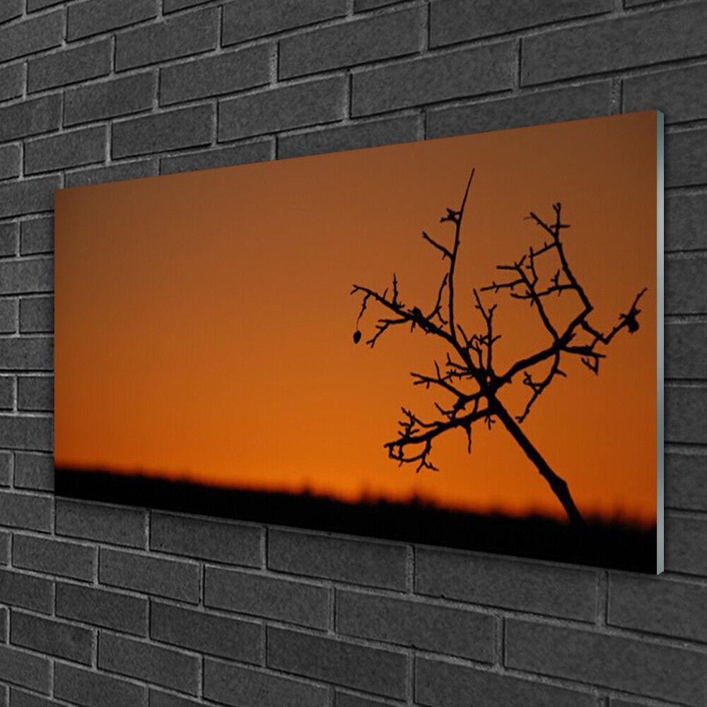 Tableau sur verre Image Impression 100x50 Art Arbre