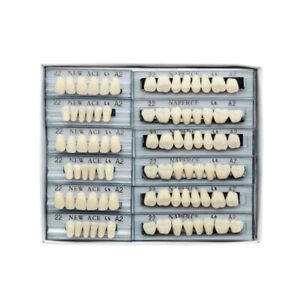168pc Acrylic Resin Denture 22# A2 Full Set Teeth Upper Lower Shade Tooth Dental