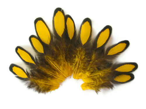 1 Dozen Yellow Whiting Farms Laced Hen Saddle Feathers Craft Fly Tying Craft