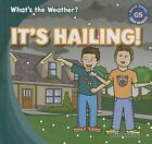It's Hailing! by Alex Appleby (Hardback, 2013)