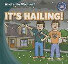 It's Hailing! by Alex Appleby (Hardback, 2013)