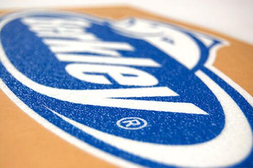 - Bass Boat Carpet Graphic Blue Decal Logo Berkley Multiple Sizes