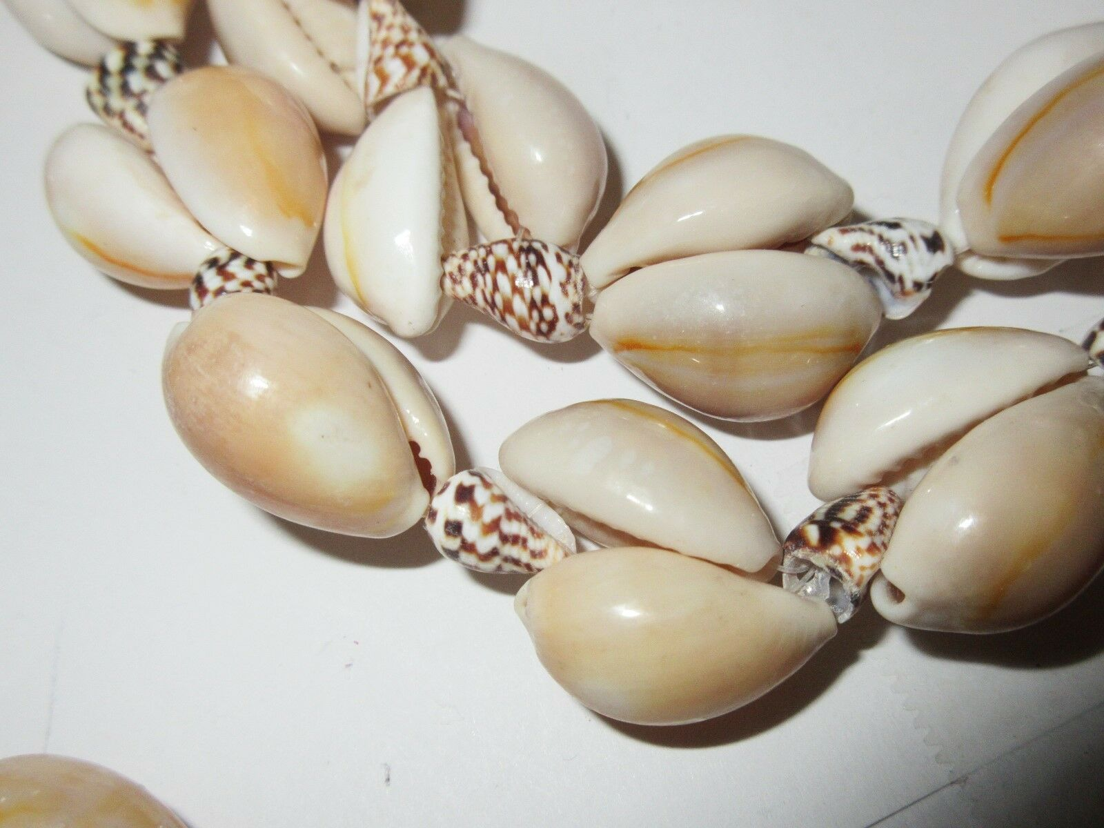 "Costume Jewelry ,Shell Necklace ,30"",Brown / Cream ,Ple"