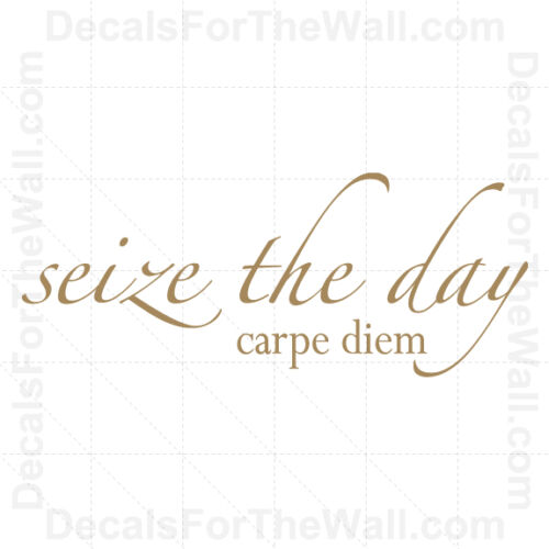 Seize the Day Carpe Diem Wall Decal Vinyl Art Sticker Quote Inspirational IN22