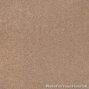 Dark beige action backed twist pile carpet lounge bedroom for Dark beige carpet texture