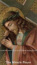*SPANISH* Miracle Prayer  Prayer Card (wallet size)