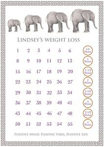 Weight loss chart reusable wipeable personalised with dry wipe pen