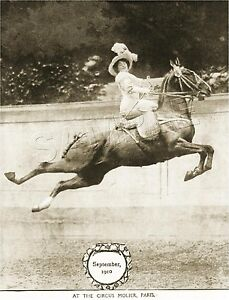 RARE-Vintage-SIDESADDLE-Antique-FRENCH-CIRCUS-Horse-PHOTO-CANVAS-Art-PRINT