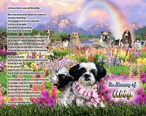Rainbow Bridge Poem Shih Tzu Dog Memorial Picture