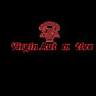 virgincarpart