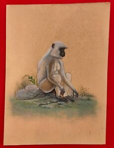 Hand-Painted-Monkey-Langur-Animal-Miniature-Painting-India-Art-Nature-on-Paper