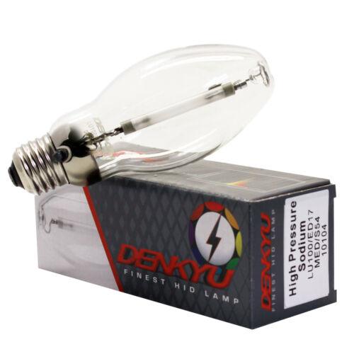 LU100//ED17 DENKYU 10104 100W High Pressure Sodium Lamp MED S54 HPS Bulb