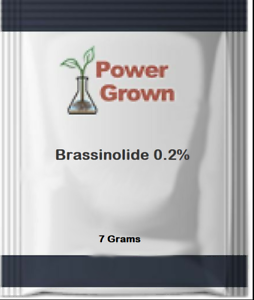Brassinolide .2/% 7 Grams w//detailed Instructions Authentic Made in the America