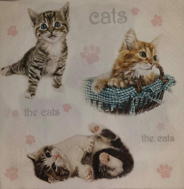 4 x INDIVIDUAL PAPER NAPKINS CATS DECOUPAGE  CRAFTING-21