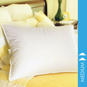 Limited Edition 50 50 White Goose Down Blend Single Pillow