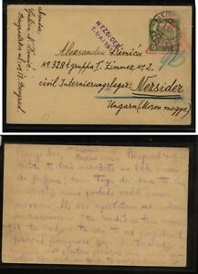 Bosnia-Herzegovina-postal-card-nice-markings-1917-to-Hungary-MS1121
