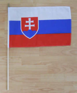 Slovakian 12 x Slovakia Flag BUTTON PIN BADGES 25mm 1 INCH Slovak Republic
