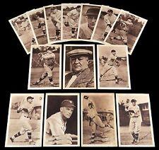 (14) 1931 Washington Senators Photo Pack Group from Scrapbook