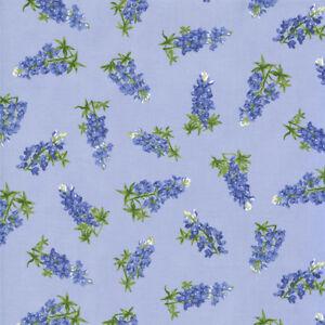 Moda-Quilt-Fabric-Best-of-Texas-by-Sara-Khammash-by-half-yard-11245-15-Blue