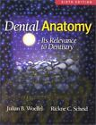 Dental Anatomy : Its Relevance to Dentistry by Julian B. Woelfel and Rickne C. Scheid (2001, Paperback, Revised)