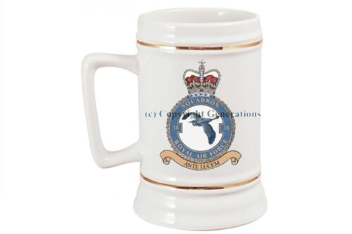 ROYAL AIR FORCE 38 SQUADRON BEER STEIN