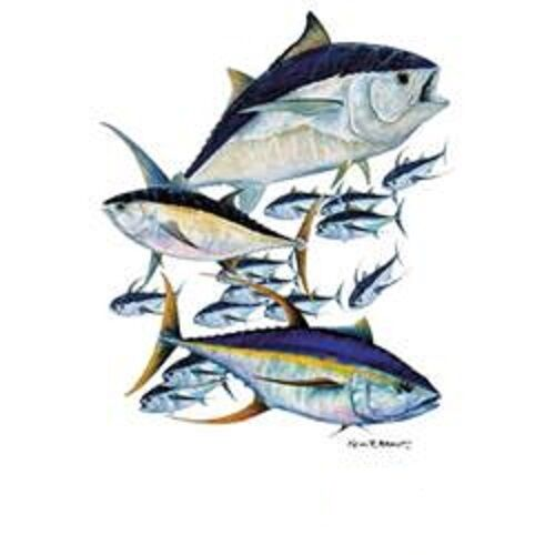 Albacore Tuna HEAT PRESS TRANSFER for T Shirt Sweatshirt Tote Bag Fabric #248kk