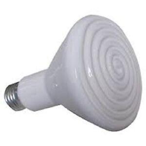 Lampada-riscaldante-in-ceramica-per-rettili-tartarughe-75-W