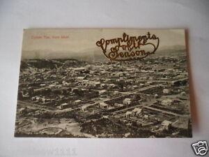 ANTIQUE-VINTAGE-POSTCARD-OLD-ZEEHAN-TAS-FROM-WEST-TASMANIA-AUSTRALIA-1908