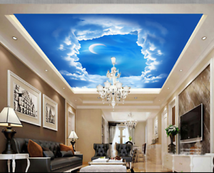 3D  White Cloud Sky 77 Ceiling Wall Paper Print Wall Indoor Wall Murals CA Carly