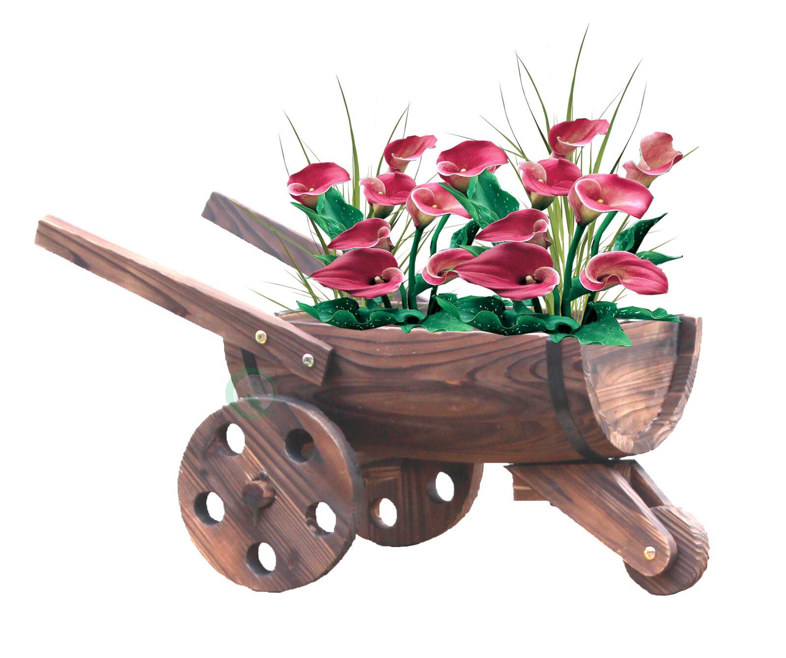 Nuevo gardenised Cocheretilla sembradora barril, QI003142