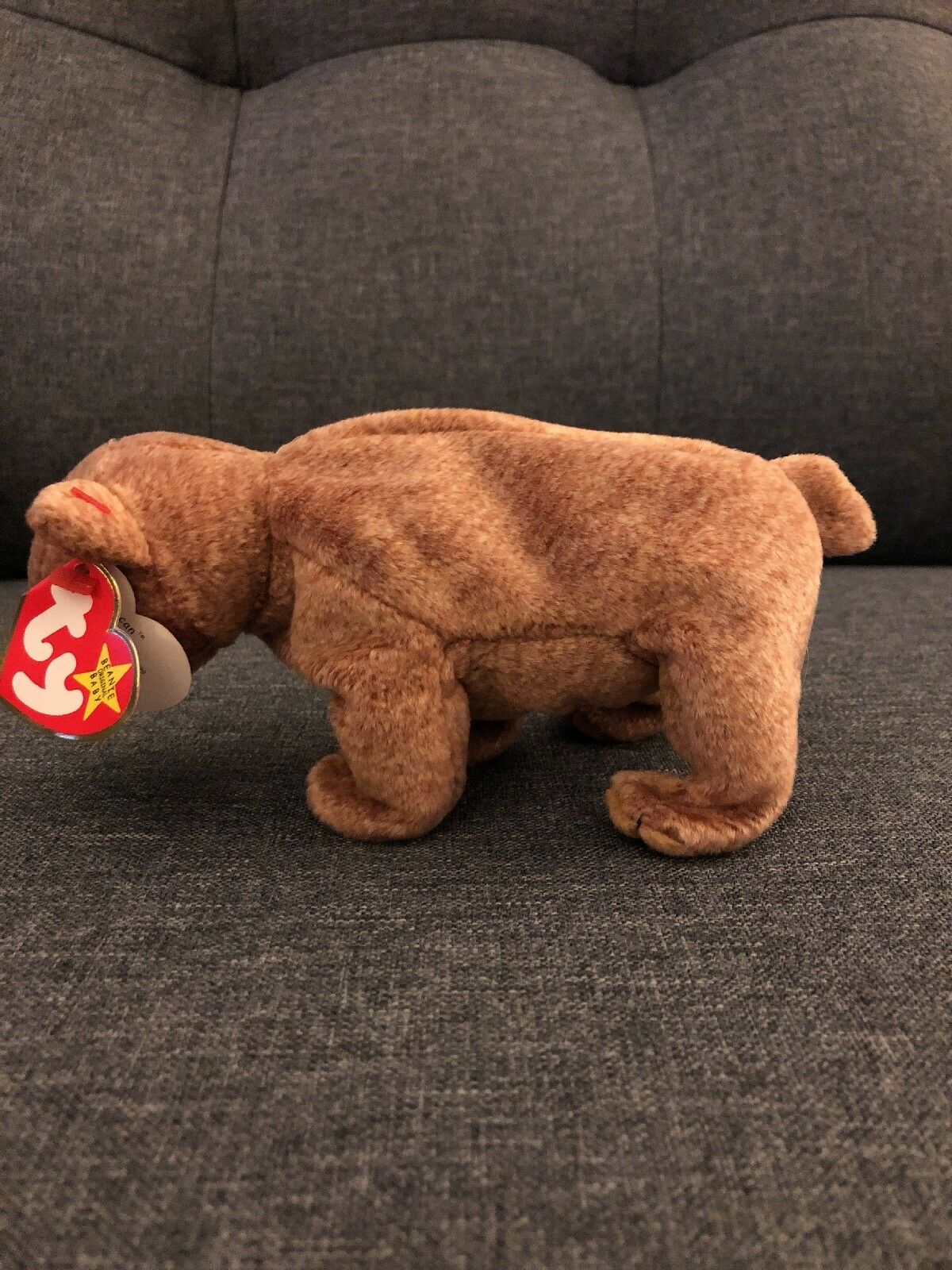 b79d0121a78 ... TY Baby Beanie Baby TY - Pecan The Brown Bear- 1999 51a92a ...