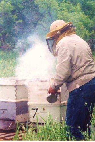 5 POUNDS SMOKER FUEL HONEY BEE KEEPING BEES HIVE SMOKE NATURAL PINE NEEDLES 5 lb
