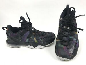 4d43c1b355e Nike Air Zoom Max LeBron James 13 Mens Size 8 Low Birds Of Prey ...