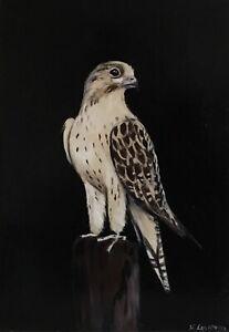 Original oil painting. Saker Falcon bird, wildlife . Signed K Eggleston