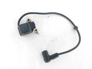 Details about Stihl SR340 420 BR340 400 420 Backpack Blower Ignition coil  OEM 4203 400 1302