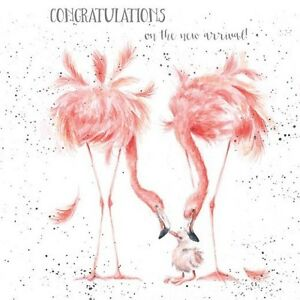 Wrendale designs new baby greeting card flamingo congratulations new image is loading wrendale designs new baby greeting card flamingo congratulations m4hsunfo