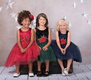 Flower Girls Embossed Floral Velvet Tulle Dress Christmas Holidays Wedding 454
