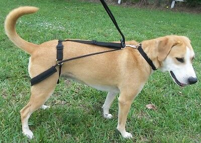 No Pulling Pull Dog Harness First Back Leg Harness - Invented by Vet Dr Horgan