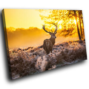 Winter-Sunrise-Brown-Deer-Funky-Animal-Canvas-Wall-Art-Large-Picture-Prints