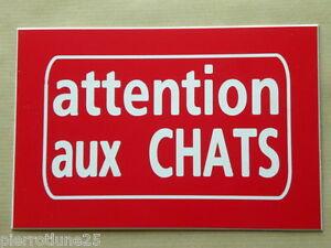 Plaque Gravée Attention Aux Chats 75 X 50 Mm Wf1frslz-10044312-169926595