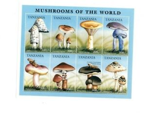 Tanzania-1996-Mushrooms-Of-the-World-Sheet-of-8-Stamps-MNH