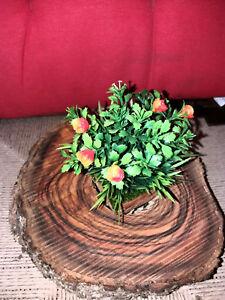 Fiori Arancioni.Bellissimo Legno Di Ulivo Secolare Con Vaso Di Fiori Arancioni Ebay