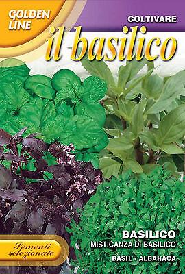 1000 Semi//Seeds BASILICO a Foglia di Lattuga