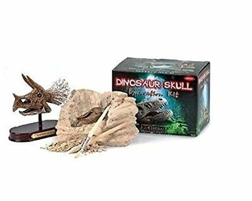 TRICERATOPS skull Excavation science kit fossil dig DINOSAUR kids display 6.5
