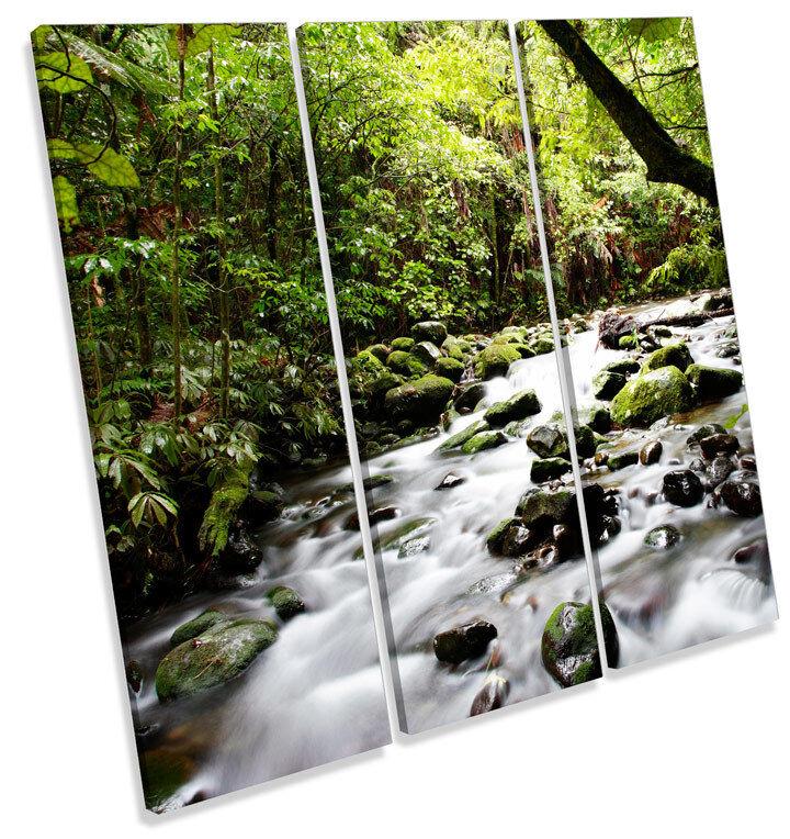 Tropical Forest River Landscape TREBLE TELA parete arte arte arte foto stampa quadrato c401e3