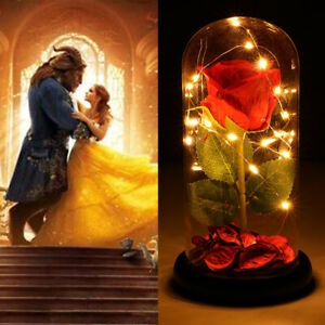Beauty and The Beast Red Rose Glass Lamp Dome Valentine LED Lighted Gift